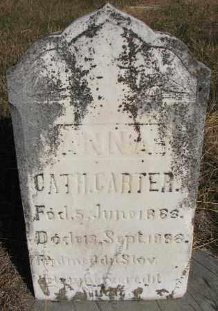 CARTER, ANNA CATHERINE - Yankton County, South Dakota | ANNA CATHERINE CARTER - South Dakota Gravestone Photos