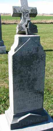NOONAN CHAMPION, BRIDGET - Yankton County, South Dakota | BRIDGET NOONAN CHAMPION - South Dakota Gravestone Photos