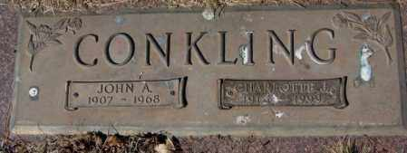 CONKLING, JOHN A. - Yankton County, South Dakota | JOHN A. CONKLING - South Dakota Gravestone Photos