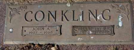 CONKLING, JOHN A. - Yankton County, South Dakota | JOHN A. CONKLING - South Dakota Gravestone Photos