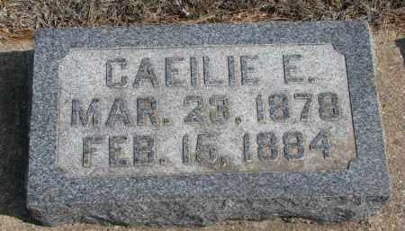 COOK, CAEILIE E. - Yankton County, South Dakota | CAEILIE E. COOK - South Dakota Gravestone Photos