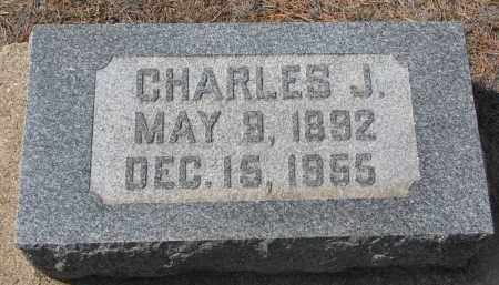 COOK, CHARLES J. - Yankton County, South Dakota | CHARLES J. COOK - South Dakota Gravestone Photos