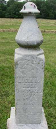 COOK, LUCIA N. - Yankton County, South Dakota | LUCIA N. COOK - South Dakota Gravestone Photos