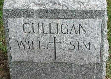 CULLIGAN, WILL - Yankton County, South Dakota | WILL CULLIGAN - South Dakota Gravestone Photos