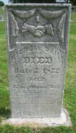 DAILY, MICHAEL - Yankton County, South Dakota | MICHAEL DAILY - South Dakota Gravestone Photos