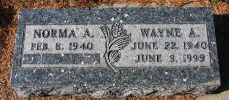 DEJONG, WAYNE A. - Yankton County, South Dakota | WAYNE A. DEJONG - South Dakota Gravestone Photos