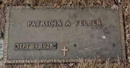 FELBER, PATRICIA A. - Yankton County, South Dakota | PATRICIA A. FELBER - South Dakota Gravestone Photos