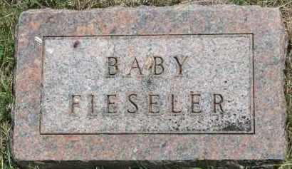 FIESELER, BABY - Yankton County, South Dakota   BABY FIESELER - South Dakota Gravestone Photos