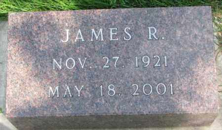 FITZGERALD, JAMES R. - Yankton County, South Dakota | JAMES R. FITZGERALD - South Dakota Gravestone Photos