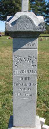 FITZGERALD, JOHANNA - Yankton County, South Dakota | JOHANNA FITZGERALD - South Dakota Gravestone Photos