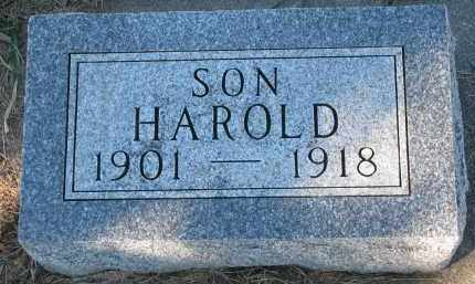 GUSTAD, HAROLD - Yankton County, South Dakota | HAROLD GUSTAD - South Dakota Gravestone Photos