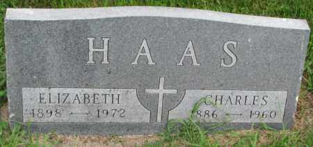 HAAS, CHARLES - Yankton County, South Dakota | CHARLES HAAS - South Dakota Gravestone Photos