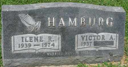 HAMBURG, ILENE R. - Yankton County, South Dakota   ILENE R. HAMBURG - South Dakota Gravestone Photos