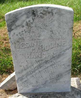 HANSEN, JESINE CAROLINE - Yankton County, South Dakota | JESINE CAROLINE HANSEN - South Dakota Gravestone Photos