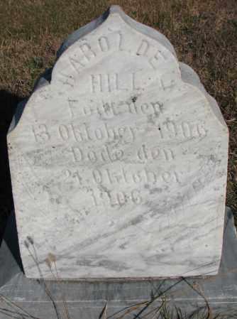 HILL, HAROLD E. - Yankton County, South Dakota | HAROLD E. HILL - South Dakota Gravestone Photos