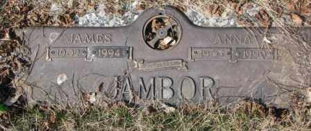 JAMBOR, ANNA - Yankton County, South Dakota | ANNA JAMBOR - South Dakota Gravestone Photos