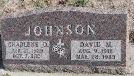 JOHNSON, DAVID M. - Yankton County, South Dakota | DAVID M. JOHNSON - South Dakota Gravestone Photos