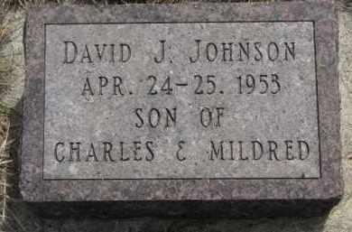 JOHNSON, DAVID J. - Yankton County, South Dakota | DAVID J. JOHNSON - South Dakota Gravestone Photos