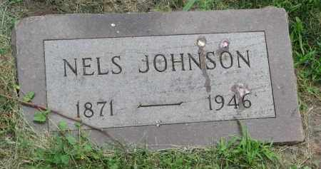 JOHNSON, NELS - Yankton County, South Dakota | NELS JOHNSON - South Dakota Gravestone Photos