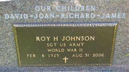 JOHNSON, ROY H. - Yankton County, South Dakota | ROY H. JOHNSON - South Dakota Gravestone Photos