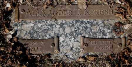 KOKESH, ALEXANDER T. - Yankton County, South Dakota   ALEXANDER T. KOKESH - South Dakota Gravestone Photos