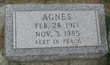 KRALICEK, AGNES - Yankton County, South Dakota | AGNES KRALICEK - South Dakota Gravestone Photos