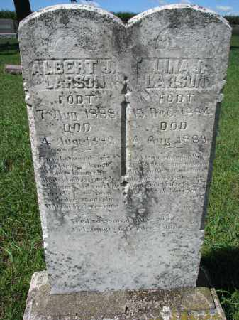 LARSON, LINA J. - Yankton County, South Dakota | LINA J. LARSON - South Dakota Gravestone Photos