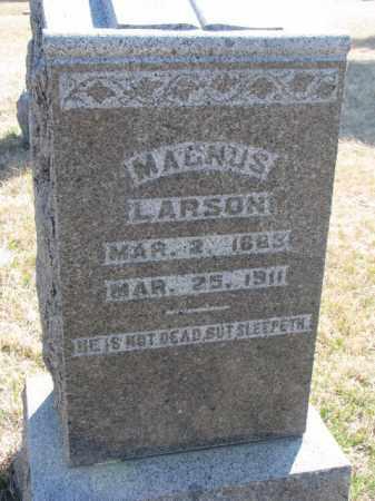 LARSON, MAGNUS - Yankton County, South Dakota | MAGNUS LARSON - South Dakota Gravestone Photos