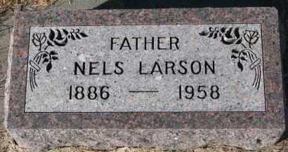 LARSON, NELS - Yankton County, South Dakota | NELS LARSON - South Dakota Gravestone Photos