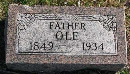 LEE, OLE - Yankton County, South Dakota | OLE LEE - South Dakota Gravestone Photos