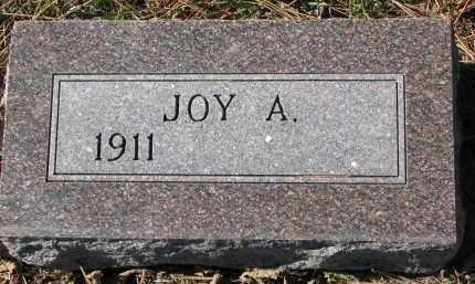 LIEN, JOY A. - Yankton County, South Dakota | JOY A. LIEN - South Dakota Gravestone Photos