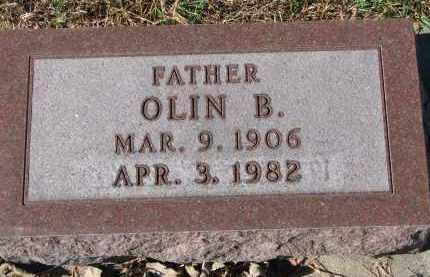LIEN, OLIN B. - Yankton County, South Dakota | OLIN B. LIEN - South Dakota Gravestone Photos