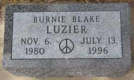 LUZIER, BURNIE BLAKE - Yankton County, South Dakota | BURNIE BLAKE LUZIER - South Dakota Gravestone Photos
