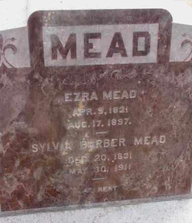 MEAD, SYLVIA - Yankton County, South Dakota | SYLVIA MEAD - South Dakota Gravestone Photos