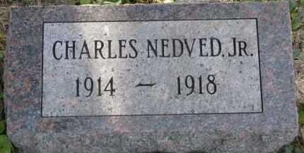 NEDVED, CHARLES JR. - Yankton County, South Dakota   CHARLES JR. NEDVED - South Dakota Gravestone Photos
