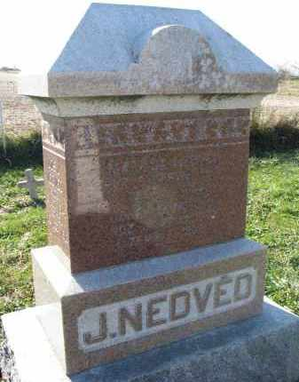 NEDVED, MATILDA - Yankton County, South Dakota | MATILDA NEDVED - South Dakota Gravestone Photos
