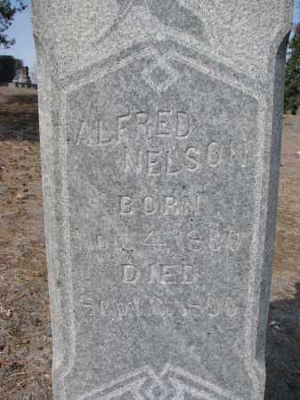 NELSON, ALFRED (CLOSEUP) - Yankton County, South Dakota | ALFRED (CLOSEUP) NELSON - South Dakota Gravestone Photos