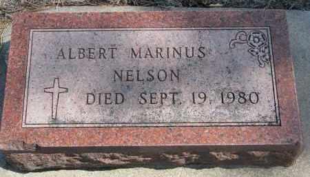 NELSON, ALBERT MARINUS - Yankton County, South Dakota | ALBERT MARINUS NELSON - South Dakota Gravestone Photos