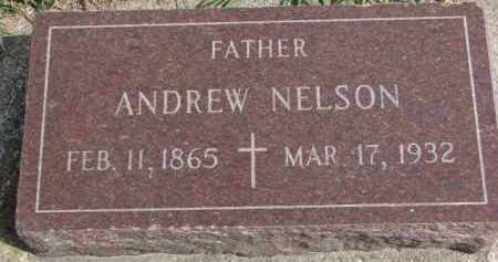 NELSON, ANDREW - Yankton County, South Dakota | ANDREW NELSON - South Dakota Gravestone Photos