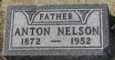 NELSON, ANTON - Yankton County, South Dakota | ANTON NELSON - South Dakota Gravestone Photos
