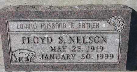 NELSON, FLOYD S. - Yankton County, South Dakota   FLOYD S. NELSON - South Dakota Gravestone Photos