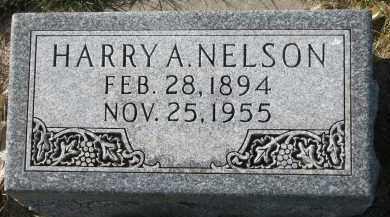NELSON, HARRY A. - Yankton County, South Dakota   HARRY A. NELSON - South Dakota Gravestone Photos