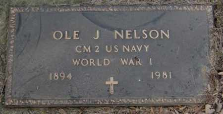 NELSON, OLE J. (WW I) - Yankton County, South Dakota | OLE J. (WW I) NELSON - South Dakota Gravestone Photos