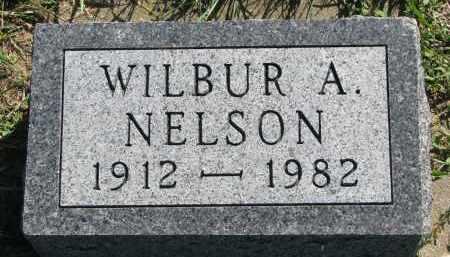 NELSON, WILBUR A. - Yankton County, South Dakota | WILBUR A. NELSON - South Dakota Gravestone Photos