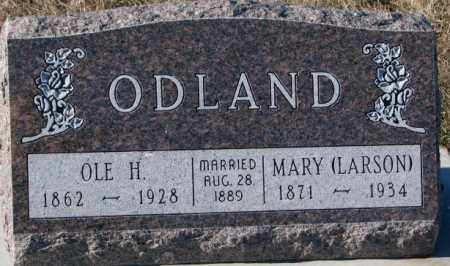 LARSON ODLAND, MARY - Yankton County, South Dakota | MARY LARSON ODLAND - South Dakota Gravestone Photos