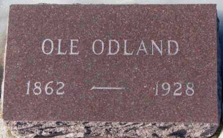 ODLAND, OLE - Yankton County, South Dakota | OLE ODLAND - South Dakota Gravestone Photos
