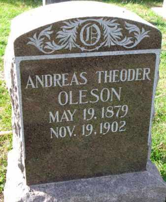 OLESON, ANDREAS THEODER - Yankton County, South Dakota   ANDREAS THEODER OLESON - South Dakota Gravestone Photos
