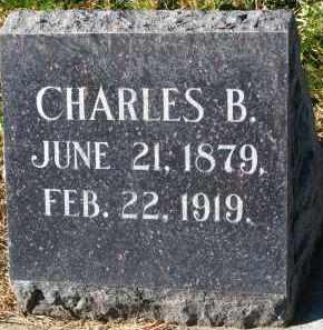 PETERSON, CHARLES B. - Yankton County, South Dakota | CHARLES B. PETERSON - South Dakota Gravestone Photos