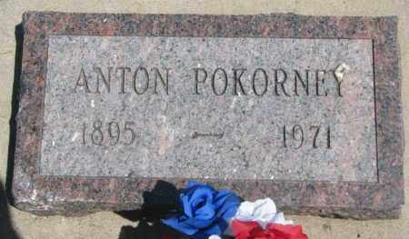 POKORNEY, ANTON - Yankton County, South Dakota | ANTON POKORNEY - South Dakota Gravestone Photos
