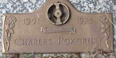 POKORNEY, CHARLES - Yankton County, South Dakota | CHARLES POKORNEY - South Dakota Gravestone Photos